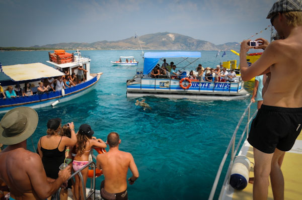 Turtle Spotting Cruise, Zakynthos. Picture courtesy of Earth, Sea & Sky