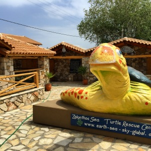 Zakynthos Sea Turtle Rehab Center