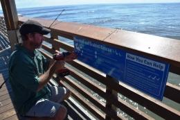 ShorebirdSignage