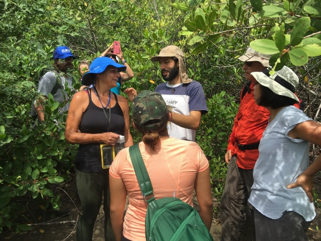 ICAPO biologists lead LMC S.W.I.M. participants on a hike through the various coastal ecosystems of the Padre Ramos Natural Preserve.