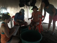 LMC S.W.I.M. participants help collect data from newly hatched hawksbill sea turtles. Turtle hatchery, Padre Ramos Natural Preserve.