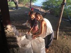 LMC S.W.I.M. participants relocate a hawksbill sea turtle nest. Padre Ramos Natural Preserve.