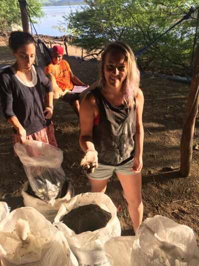 LMC S.W.I.M. participants help ICAPO biologists relocate eggs from a hawksbill sea turtle nest. Padre Ramos Natural Preserve.