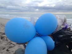 In 2016, LMC biologists collected 988 balloons along the 9.5 miles of beach monitored for sea turtle nesting activity.