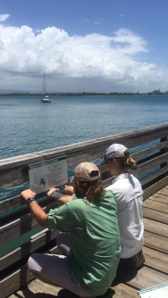 Demi and I hanging sea turtle rescue signage at the pier in Old San Juan.