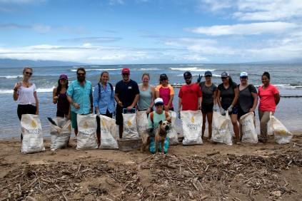 SWIM guests assist Paluma Lanai with marine debris efforts. PC: Jeff Biege Photography